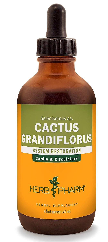 Herb Pharm Cactus Grandiflorus Liquid Extract for Cardiovascular Circulatory Support – 4 Ounce