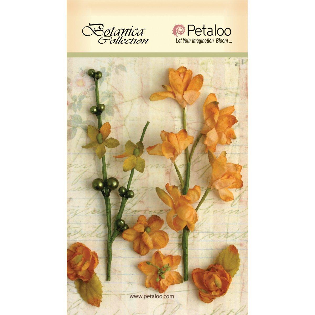 ボタニカ花カゲロウ-琥珀 B00FD5N8NI
