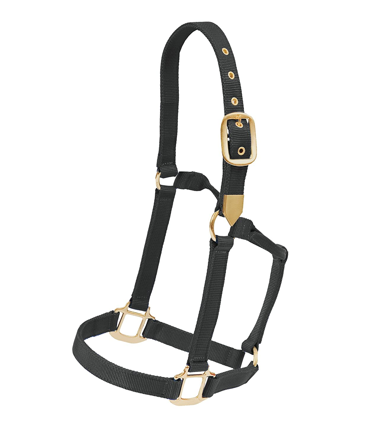 Brown Colorado Saddlery The 8-614 New /& Improved Pony Hi Country Halter