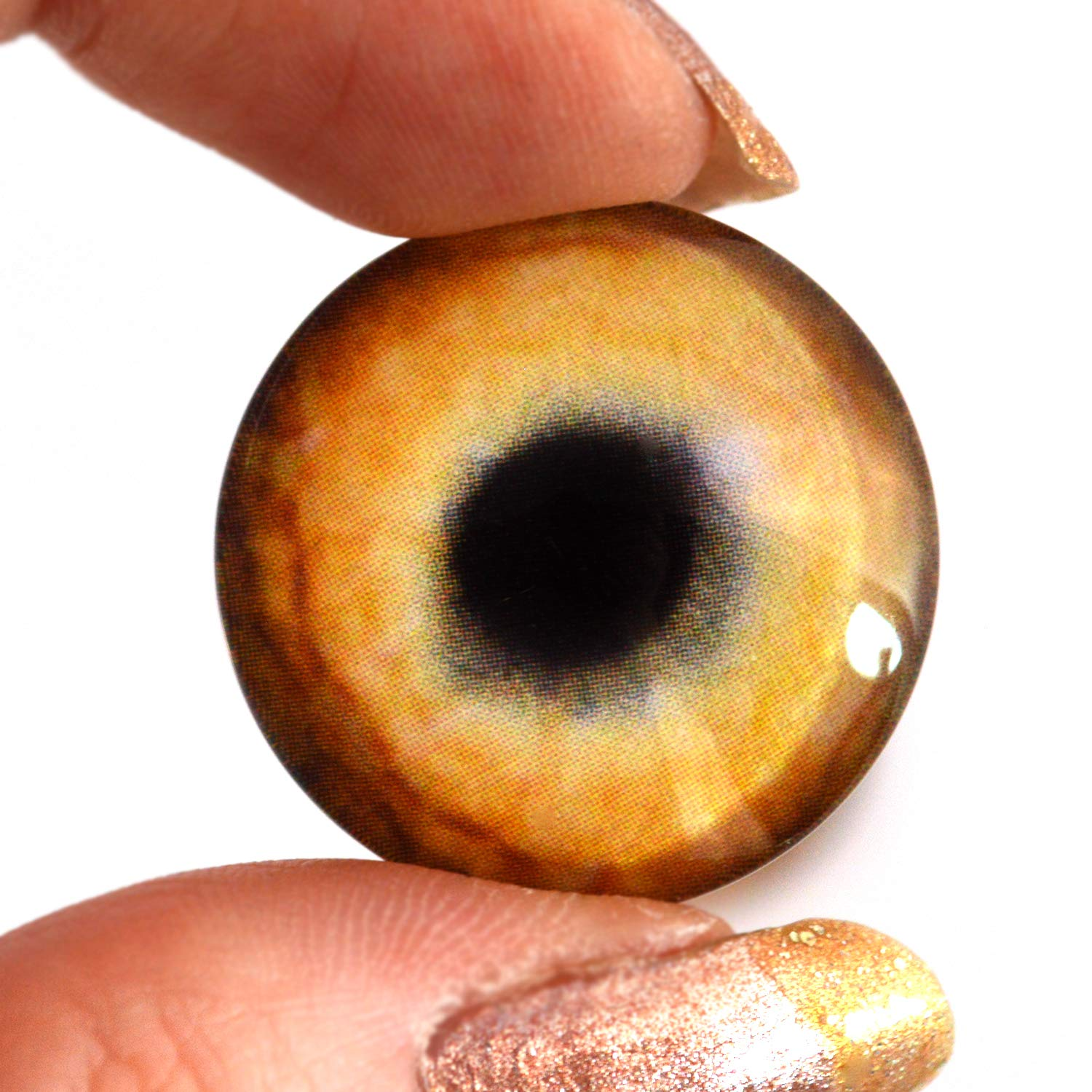 Jewelry Making Cabochons Prop Medium Brown Dog Glass Eyes Realistic Animal Pair for Puppy Art Doll Parts Taxidermy Sculpture 6mm and More Fursuit Supplies Mask