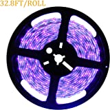 DeepDream Blacklight Purple LED Black Light Germicidal Disinfection UV Lights Night Fishing Lamp Battery Powered 12V 3528 32.8ft 600LEDs Strip Blacklights Tape with 4A Power Supply Adapter