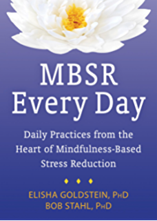 A mindfulness based stress reduction workbook a new harbinger mbsr every day daily practices from the heart of mindfulness based stress reduction fandeluxe PDF