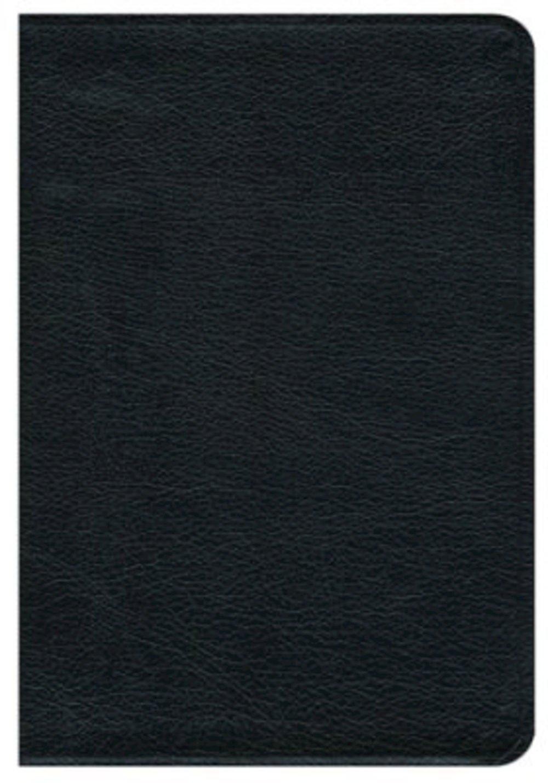 Read Online New Revised Standard Version Premium Gift Bible: Black Bonded Leather PDF