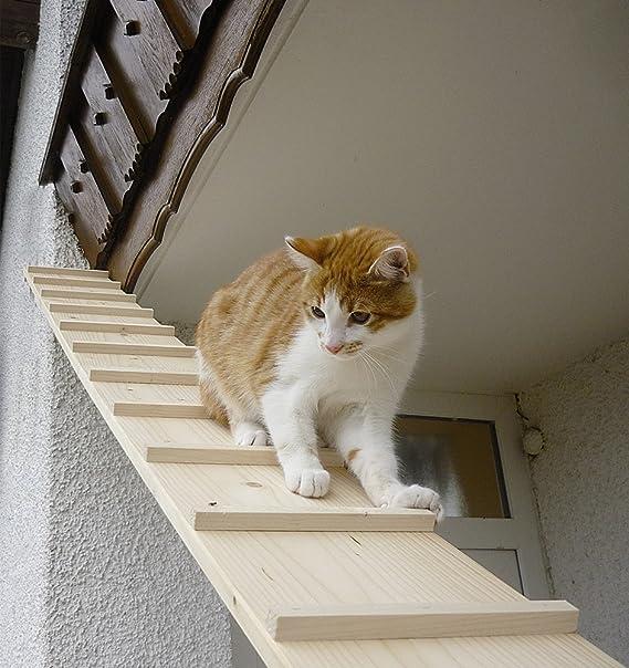 Elmato Gato escaleras, 4 m: Amazon.es: Productos para mascotas