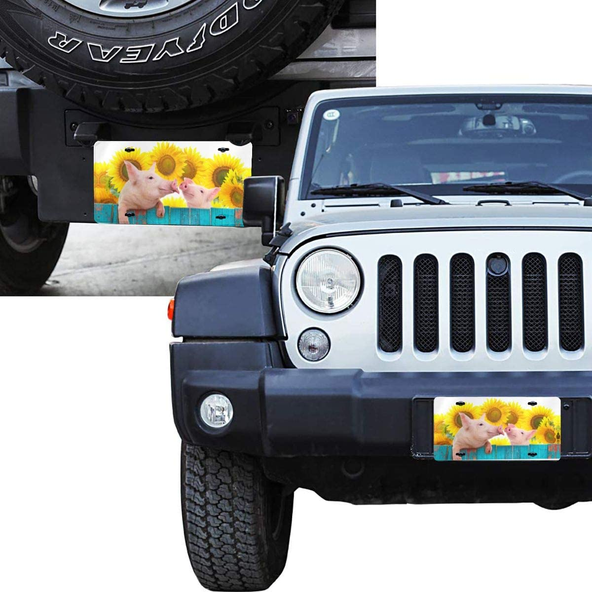 6 X 12 in Funny Pig Hanging Car Tag Cover Decorative License Plates for Front of Car Durable Metal Car Plate for Women//Girls//Men//Boys Vanity Gifts Dujiea License Plate Aluminum