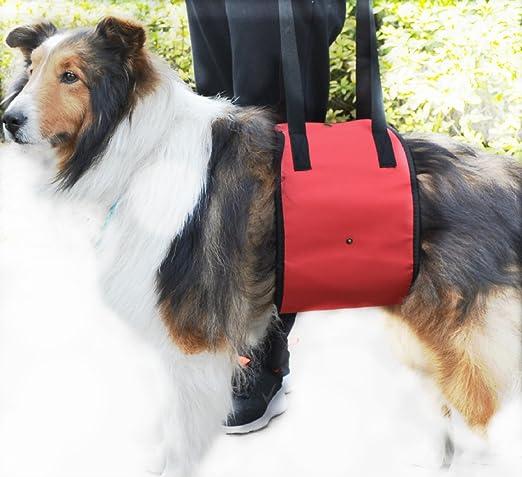 Mitefu Arnés de apoyo para la rehabilitación de perros, ayuda para levantamiento de pesas, talla XL y grande para mascotas que van arriba/abajo, ...