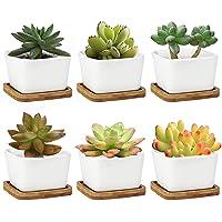 Succulent Pots, Krisami White Square Ceramic Flower Planter Pot with Bamboo Tray, Small Plants Ceramic Flowerpot, Garden…