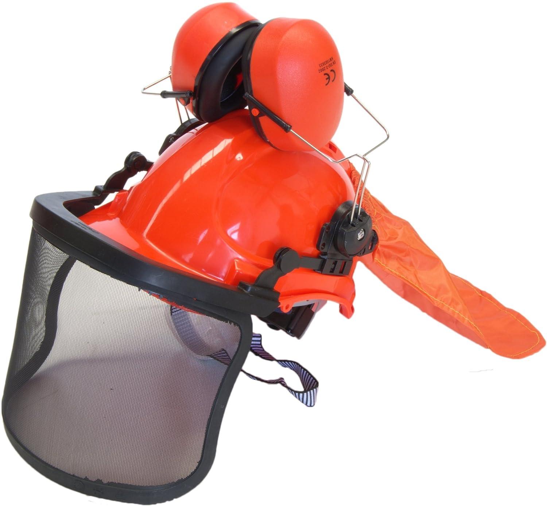 Bricoferr BFK390 Kit para la protección desbrozadora: Amazon ...