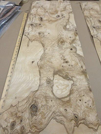 Olive Ash Burl Wood Veneer 14 X 44 Raw With No Backing 1