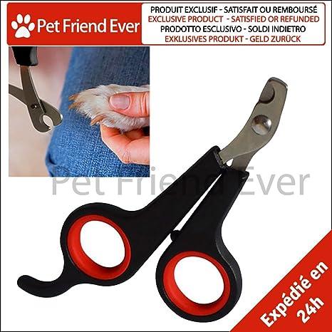 Corta Uñas PetFriendEver ☆ Especial Gatos, Perros, Roedores, Pájaros - Calidad PRÉMIUM