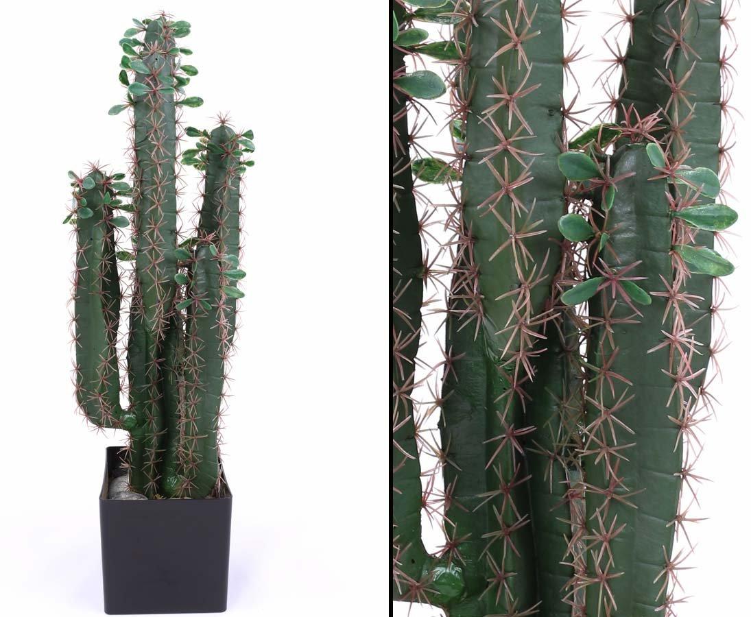 Kunstlicher Sukkulenten Kaktus Wolfsmichl 75cm Mit Baume Topf