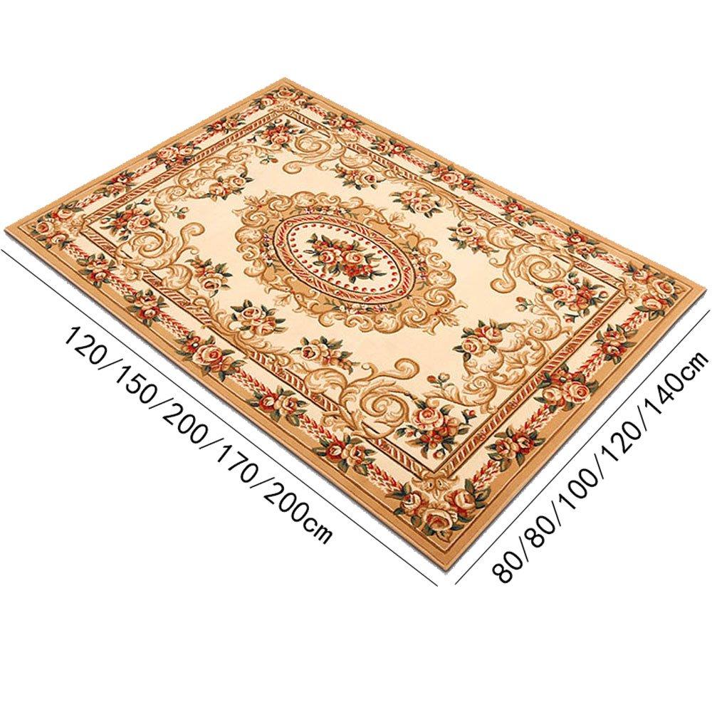 Amazon.com: LiYong Carpet, Door Carpet, Living Room Coffee ...
