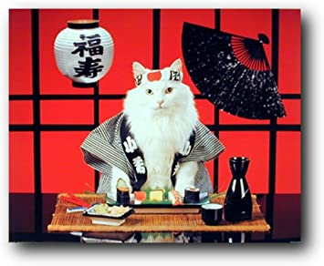 22x34-16045 SUSHI CAT POSTER