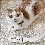 Amazon.com: chomchom Roller Edición limitada gato: Mascotas