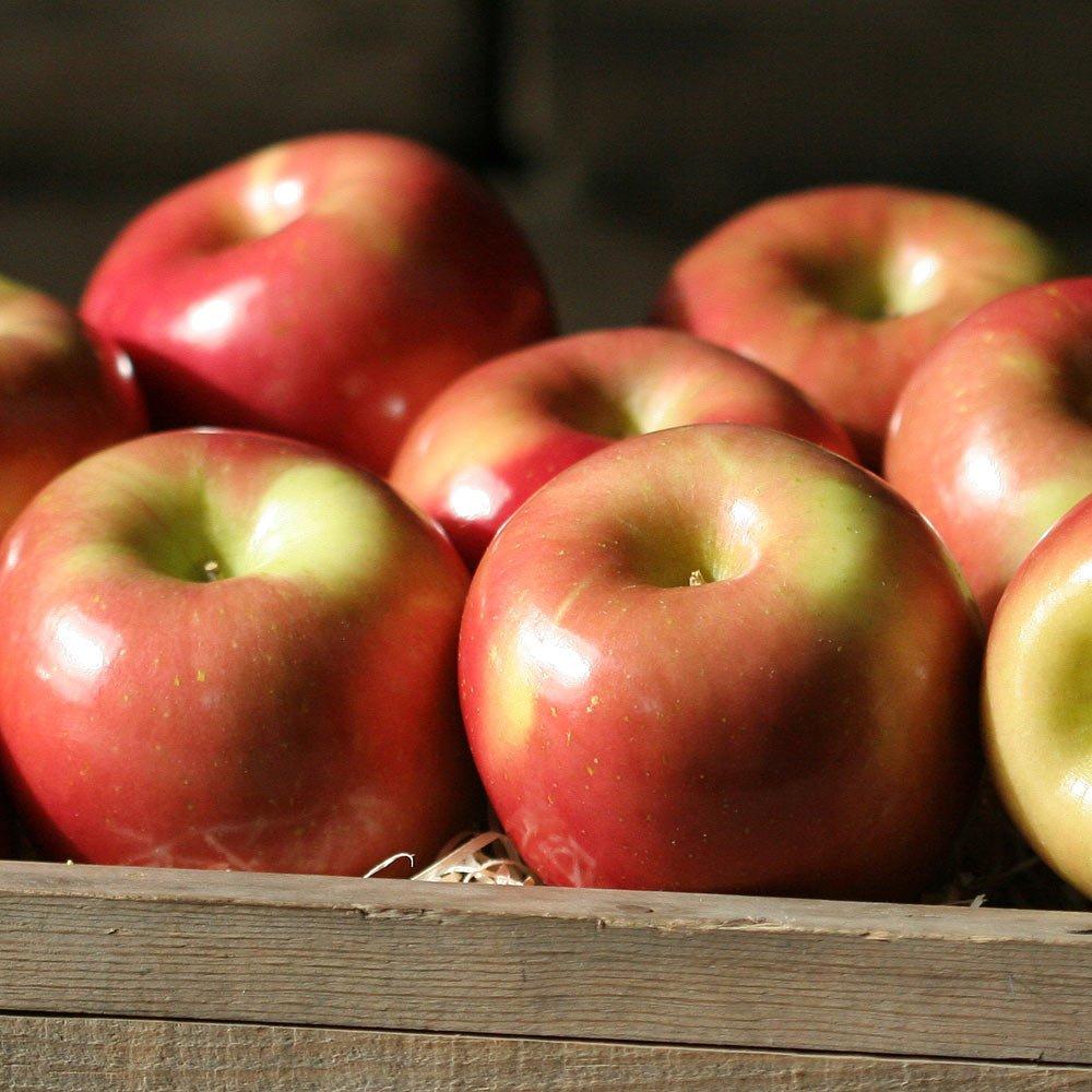 Fuji Apples - 2.5 lb