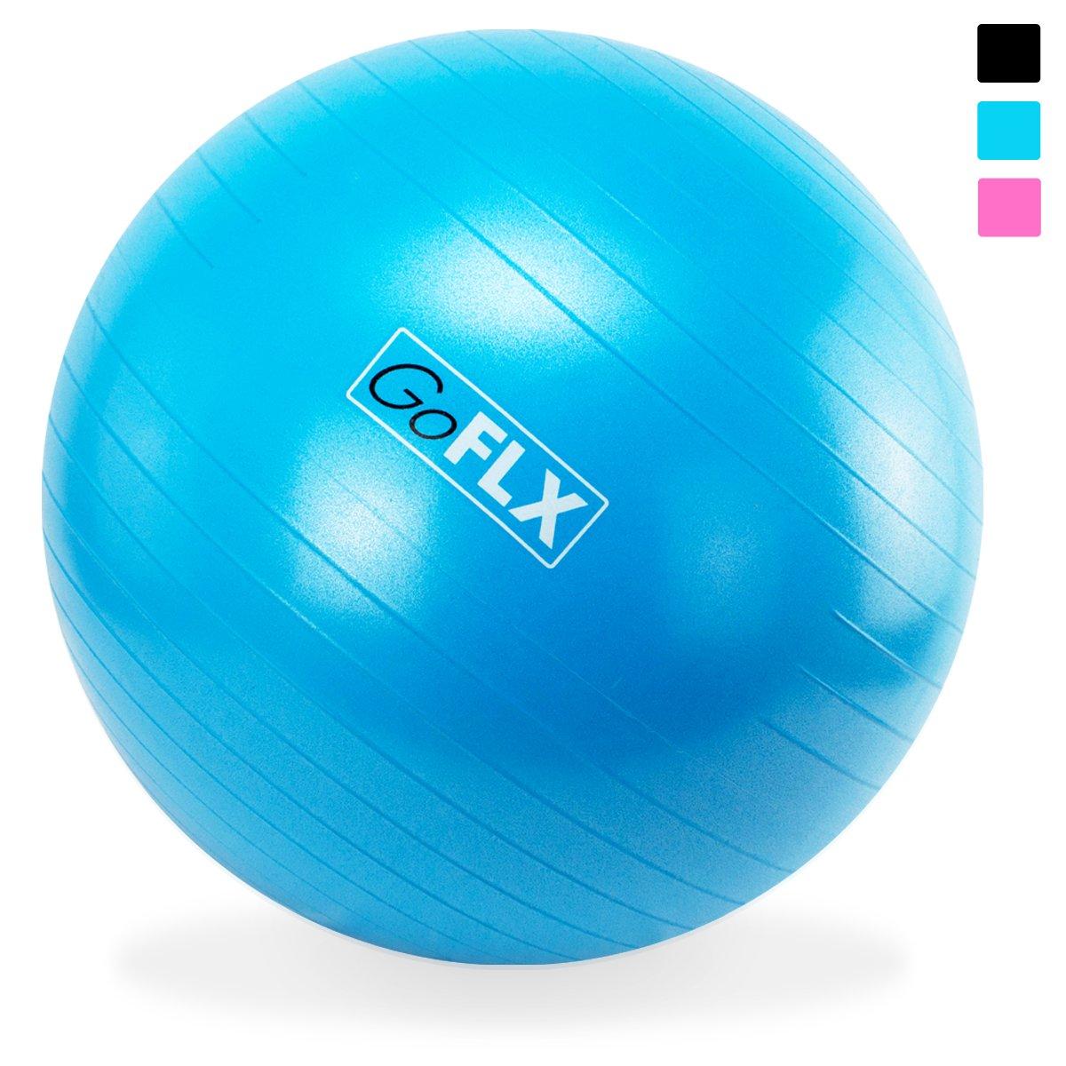 【予約受付中】 GoFLX バランスボール CM|ブルー ブルー 65cm ポンプ付 CM - ヨガ、エクササイズに最適。耐荷重200kgまで対応のエクササイズボール(ブルー) B00WJW39OG ブルー 75 CM 75 CM|ブルー, 相生市:145ccbb1 --- arianechie.dominiotemporario.com