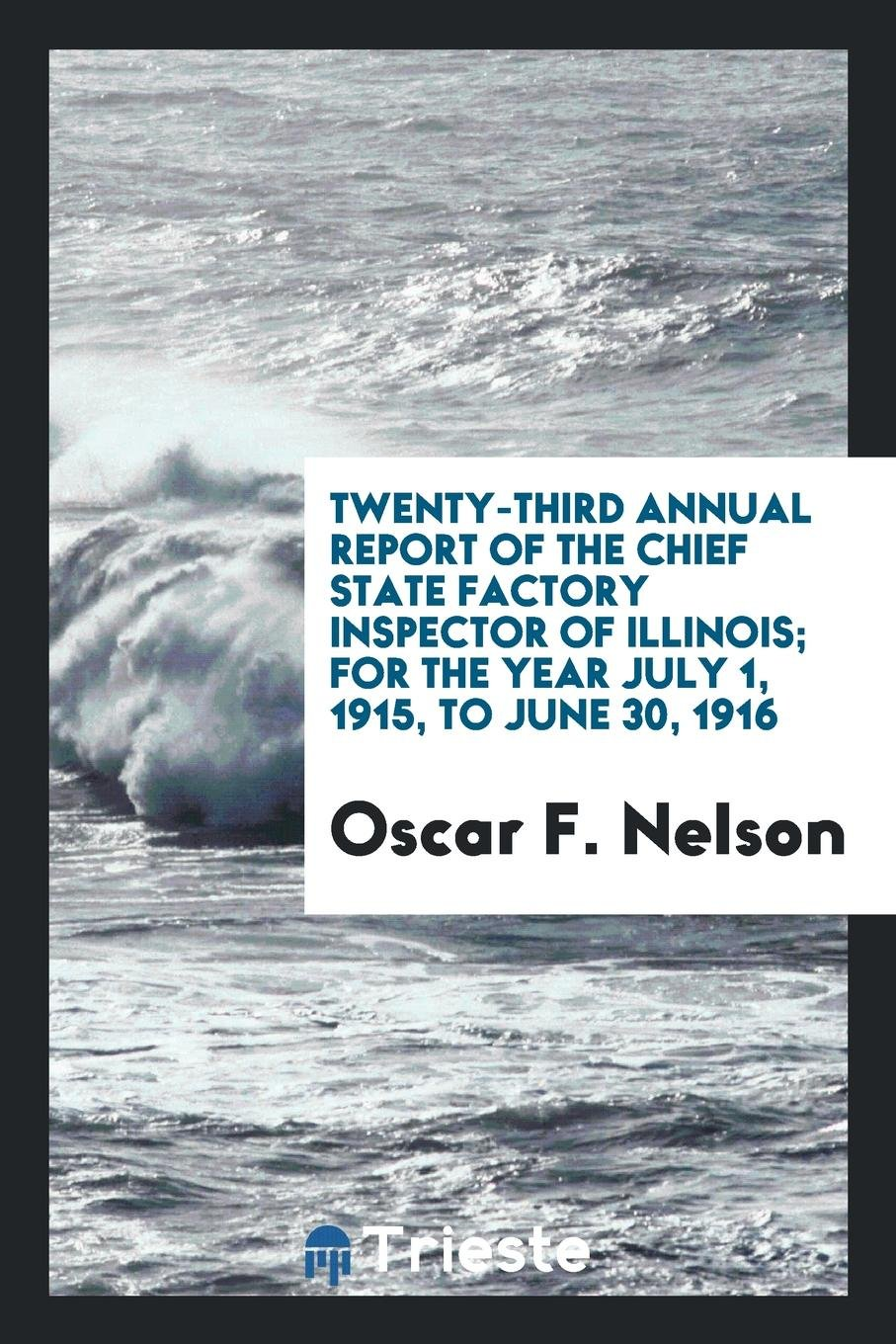 Download Twenty-Third Annual Report of the Chief State Factory Inspector of Illinois; For the Year July 1, 1915, to June 30, 1916 ebook