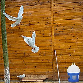 Large Capacity Automatic Bird Pigeon Feeder Water Dispenser Waterer Pigeon Feeder 2L