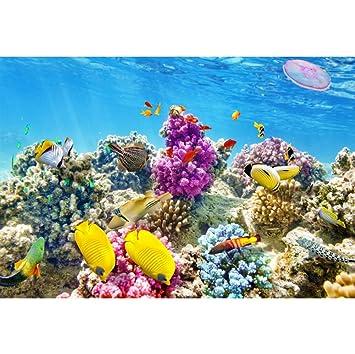 YongFoto 1,5x1m Vinilo Fondo de fotografía Acuario de Colores Fondo bajo el Agua Los Peces Corales Telón de Fondo Fotografía cumpleaños Estudio de Foto ...