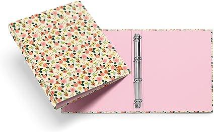 Archivador Carpeta de Anillas MIQUELRIUS Cart/ón duro Tama/ño DIN A4 Color Rosa 4 anillas de 25 mm