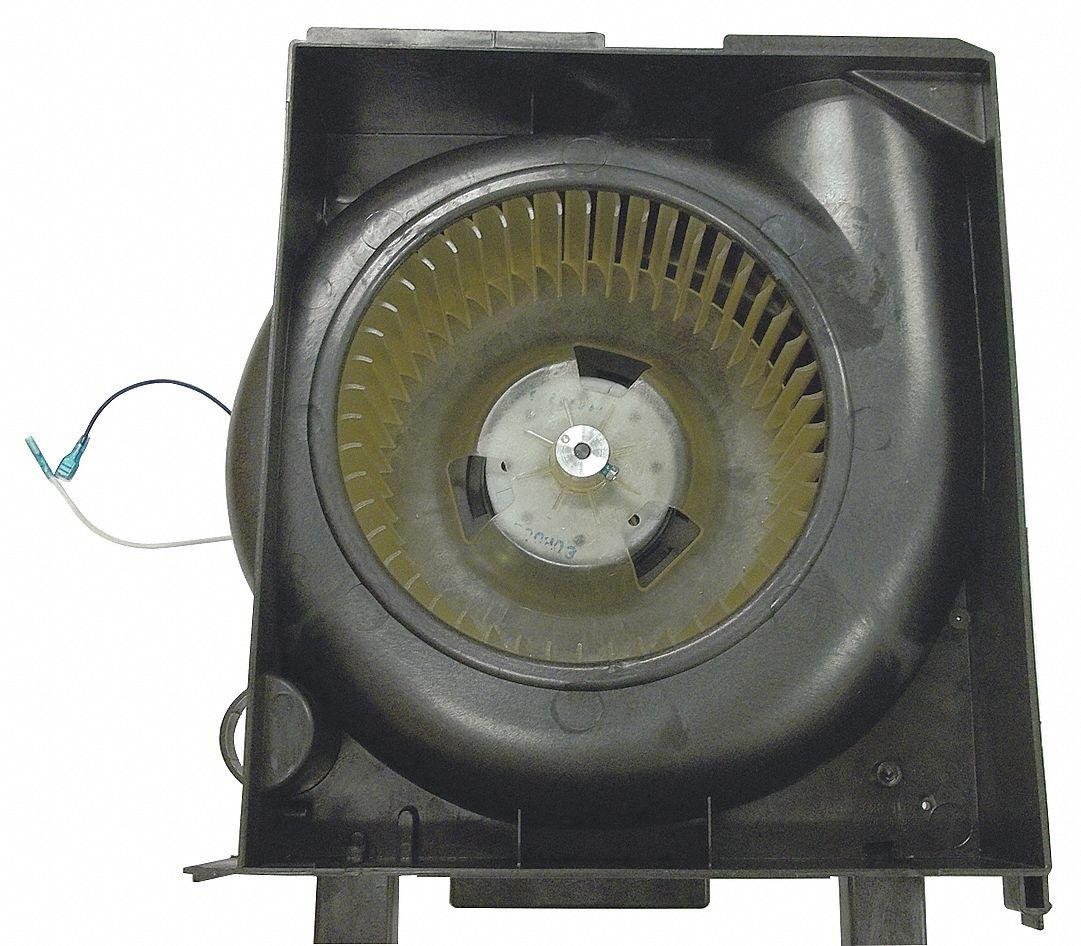 Motor/soplador, - Rueda para cortacésped: Amazon.es: Amazon.es