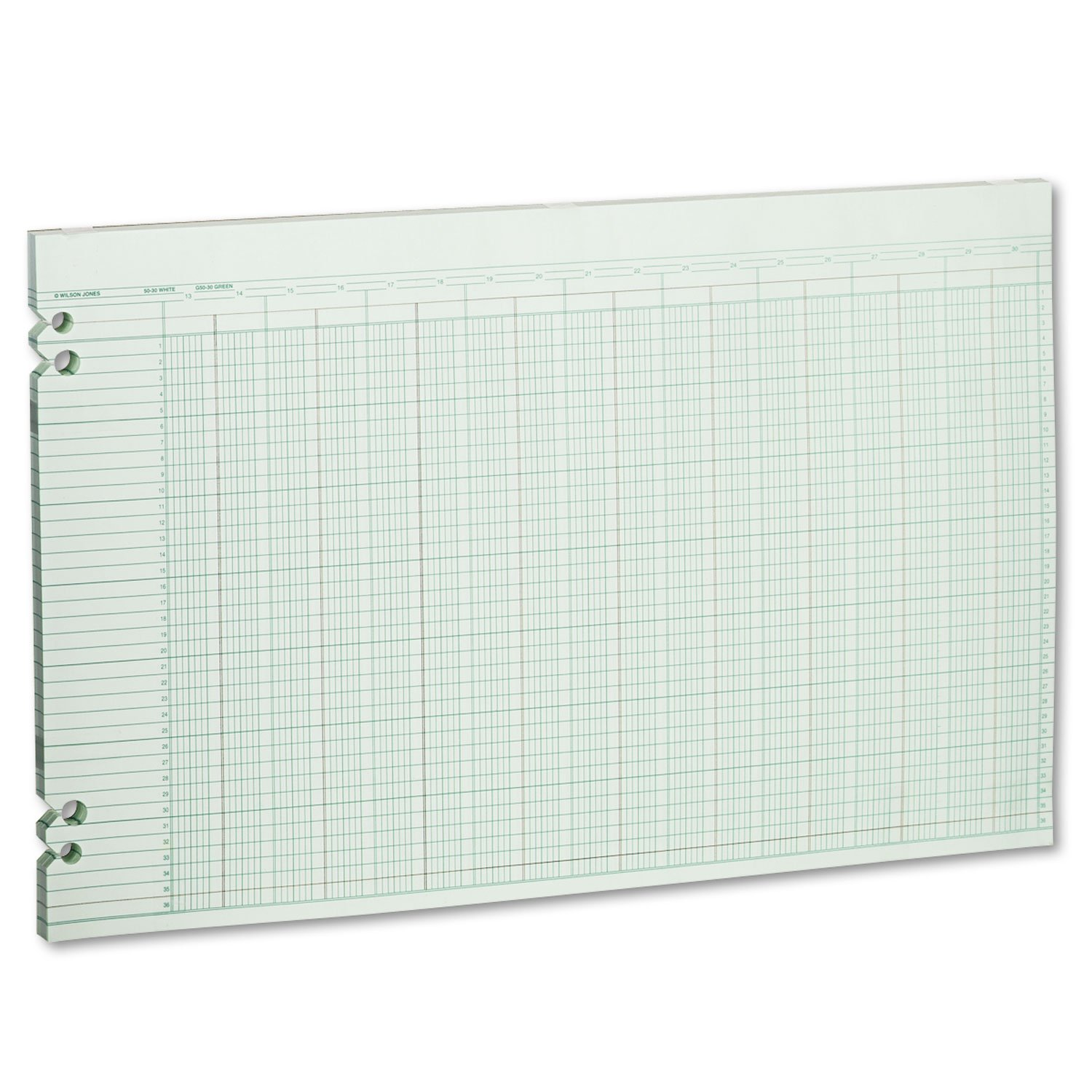 Wilson Jones G5030 Accounting Sheets, 30 Columns, 11 x 17, 100 Loose Sheets/Pack, Green by Unknown
