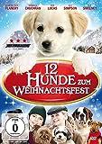 12 Hunde zum Weihnachtsfest