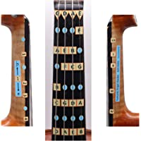 Fantastic Violin Finger Guide - All Notes Guide for Full (4/4) Size Violin Fiddle - More Sizes Available