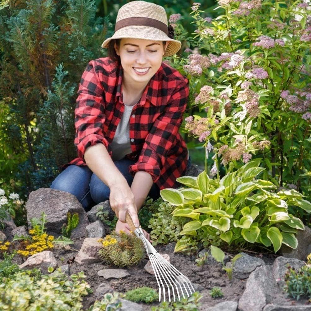 Gowsch R/âteau /à Gazon /à arbuste /à Main en Acier Inoxydable 9 Dents r/âteau /à Feuilles de pelouse avec poign/ée en Bois Outils de Jardinage Robustes