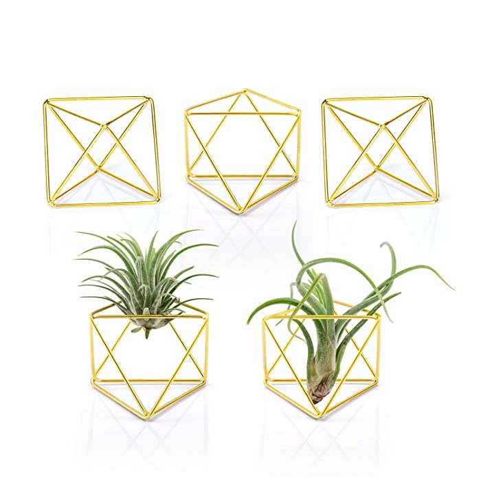 """Mkono 5 Packs Air Plant Holder Modern Geometric Planter Tiny Metal Tillandsia Air Ferns Display Stand Mini Tabletop Himmeli Decor with Each Side 2.6"""" Long for Home, Office and Wedding, Gold"""