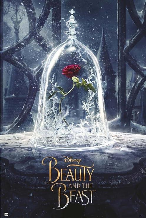 Poster Disney La Belle Et La Bete Rose 61cm X 91 5cm 2