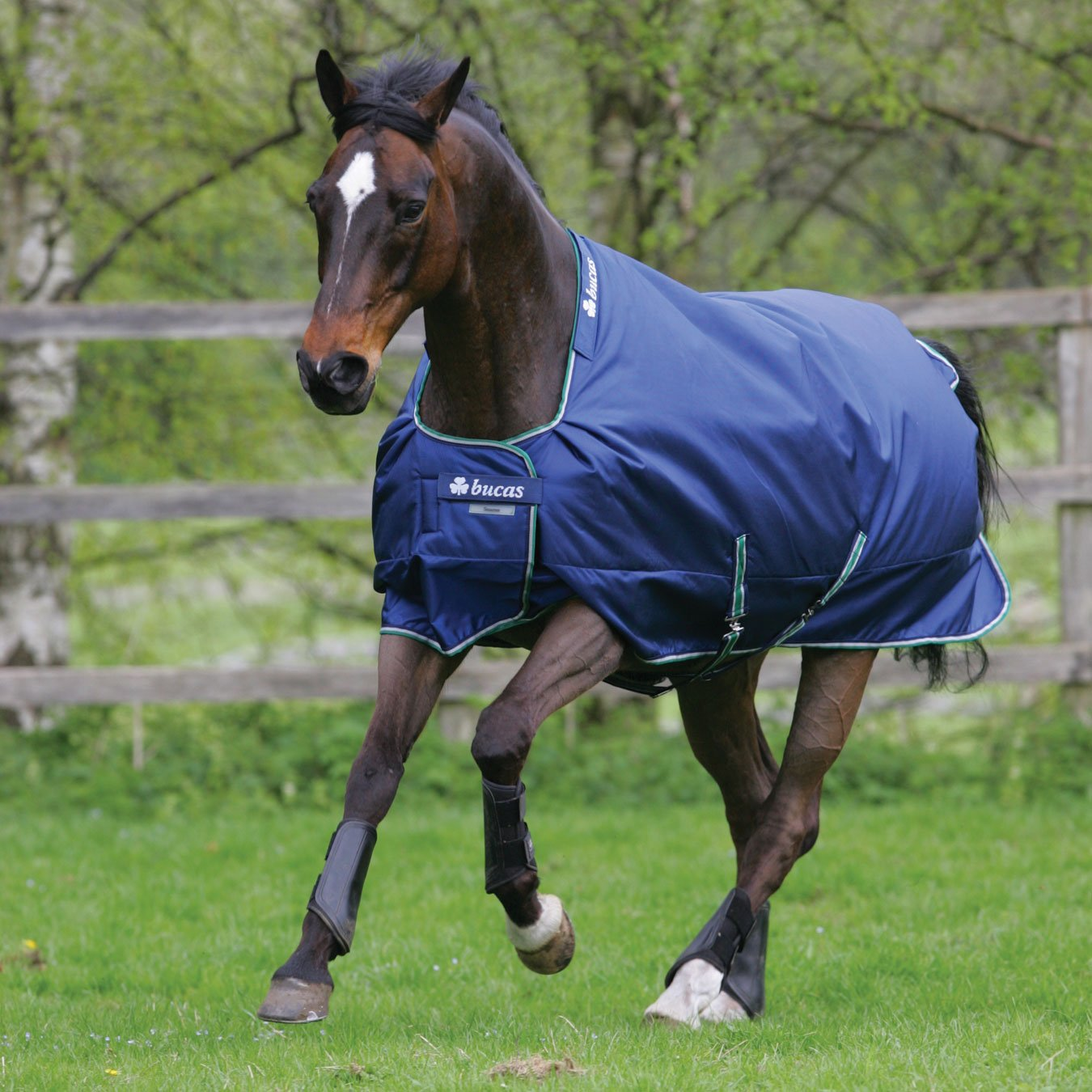 Bucas Smartex Turnout Rain Big Neck 0g - blue