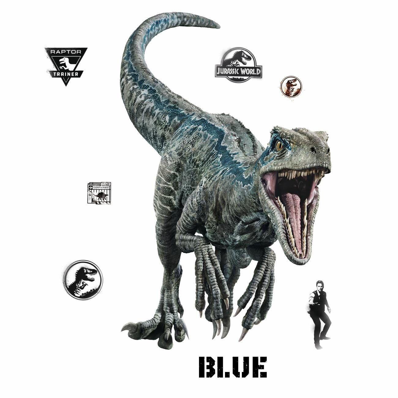 RoomMates Jurassic World: Fallen Kingdom Velociraptor Giant Peel and Stick Wall Decals, Blue, Black - RMK3799GM by RoomMates