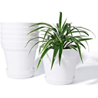 Deals on POTEY 6 Inch Indoor Plant Pot