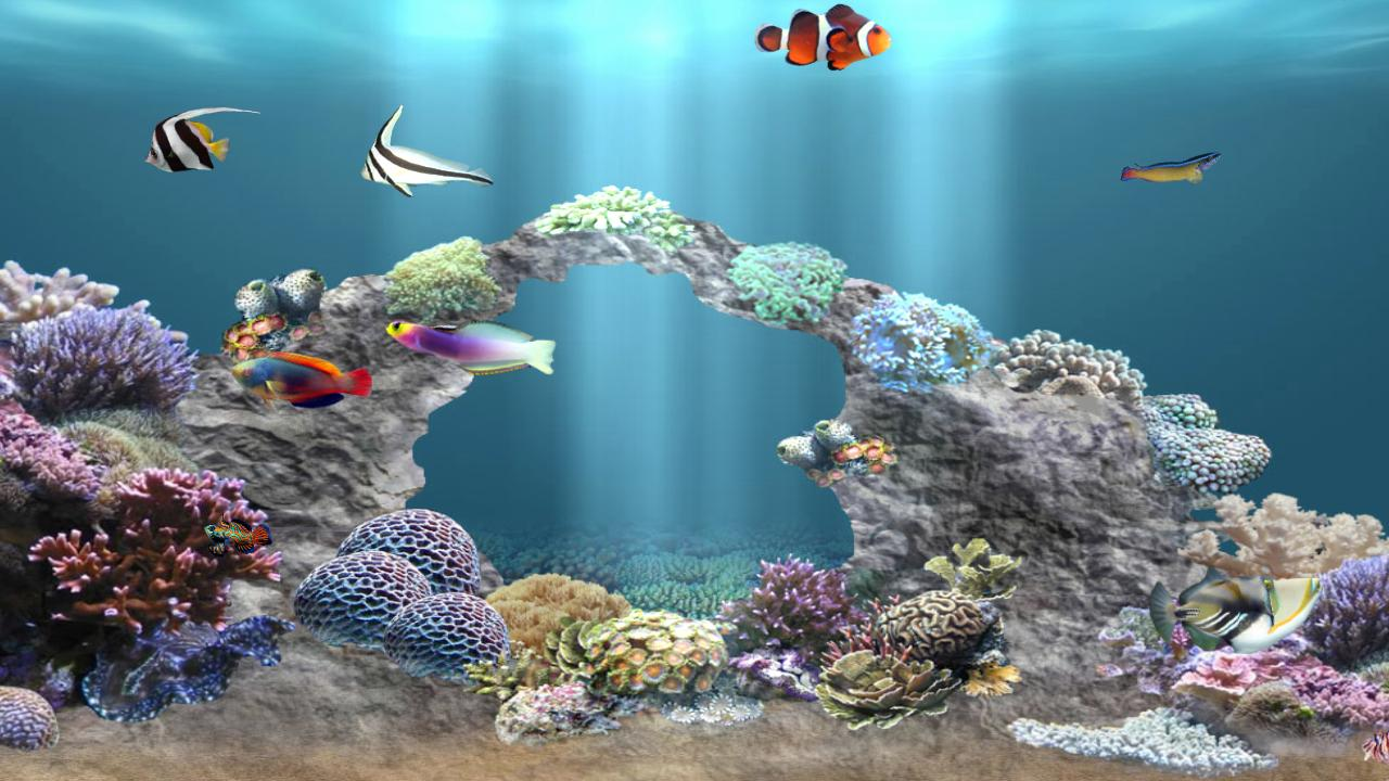 Anipet aquarium free appstore for android for Amazon fish tank