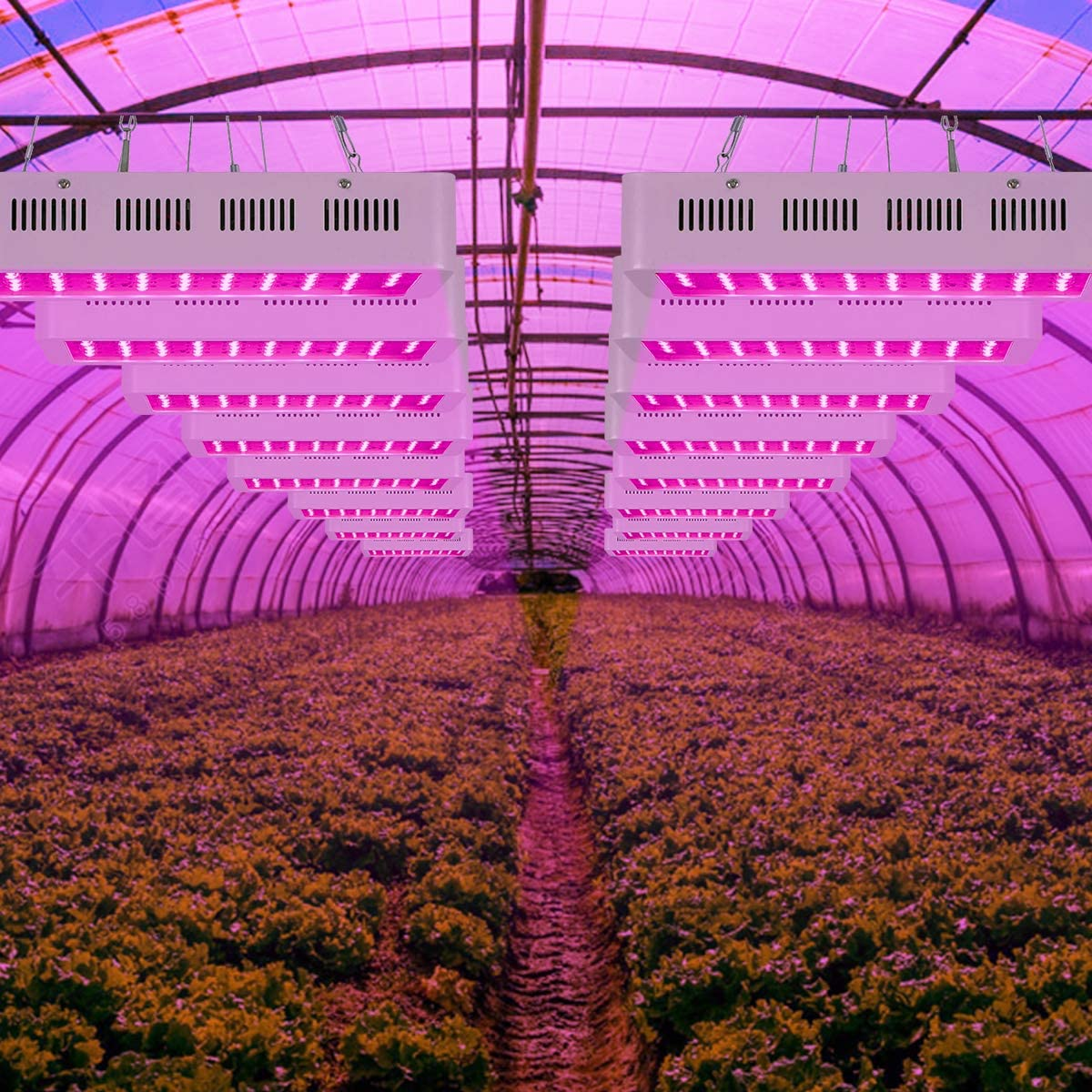 LED grow lights are a popular horticulture product