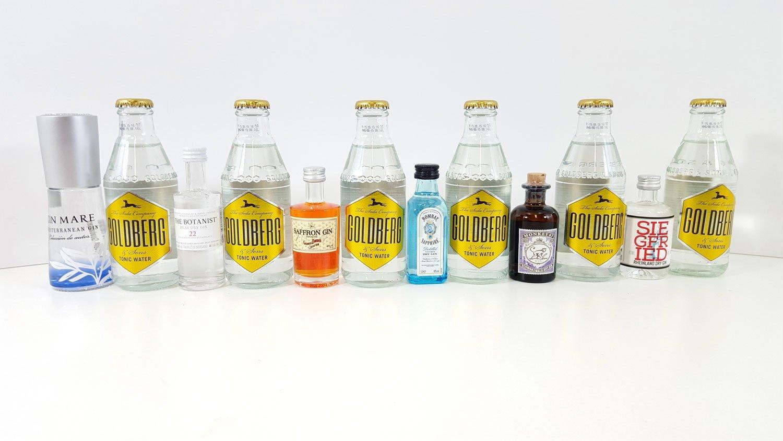Gin Tonic Probierset - 6x verschiedene Gin Minis + 6x Goldberg Tonic ...