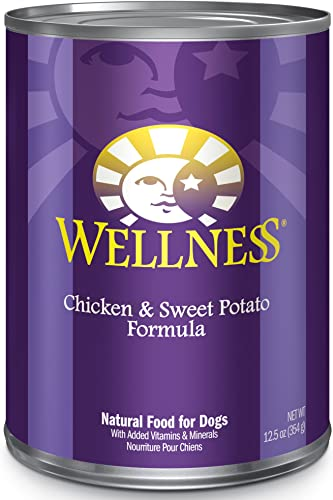 Wellness Complete Health Natural Wet Canned Dog Food Chicken Sweet Potato