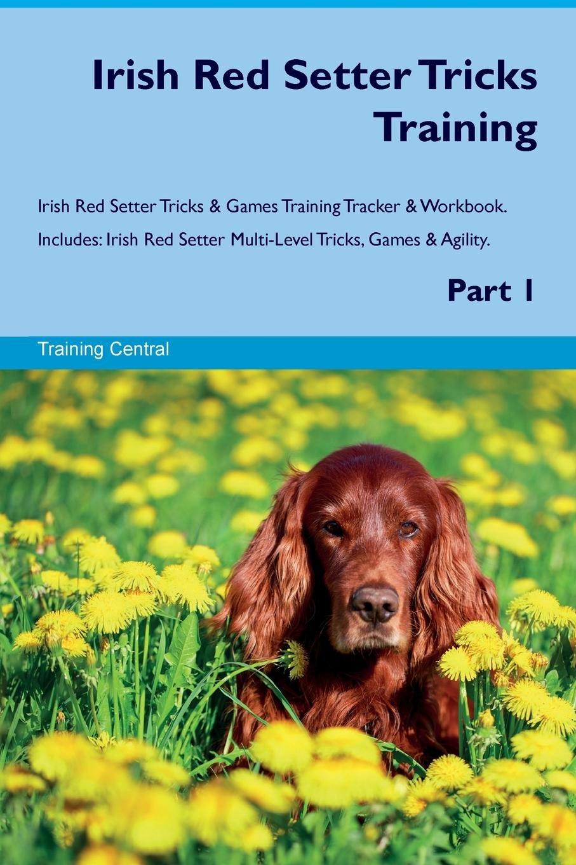 Read Online Irish Red Setter Tricks Training Irish Red Setter Tricks & Games Training Tracker & Workbook.  Includes: Irish Red Setter Multi-Level Tricks, Games & Agility. Part 1 PDF