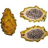 Pitahaya Gelbe Drachenfrucht *Hylocereus megalanthus* 8 Samen + (Anleitung zur Aufzucht)