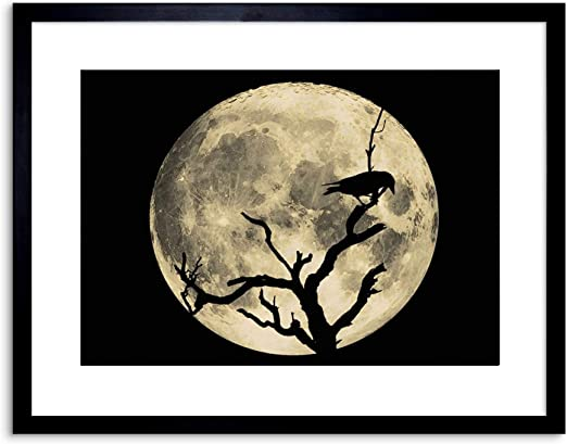 Planets and Moons Framed Print Picture Art Birds Silhouettes of Elephants