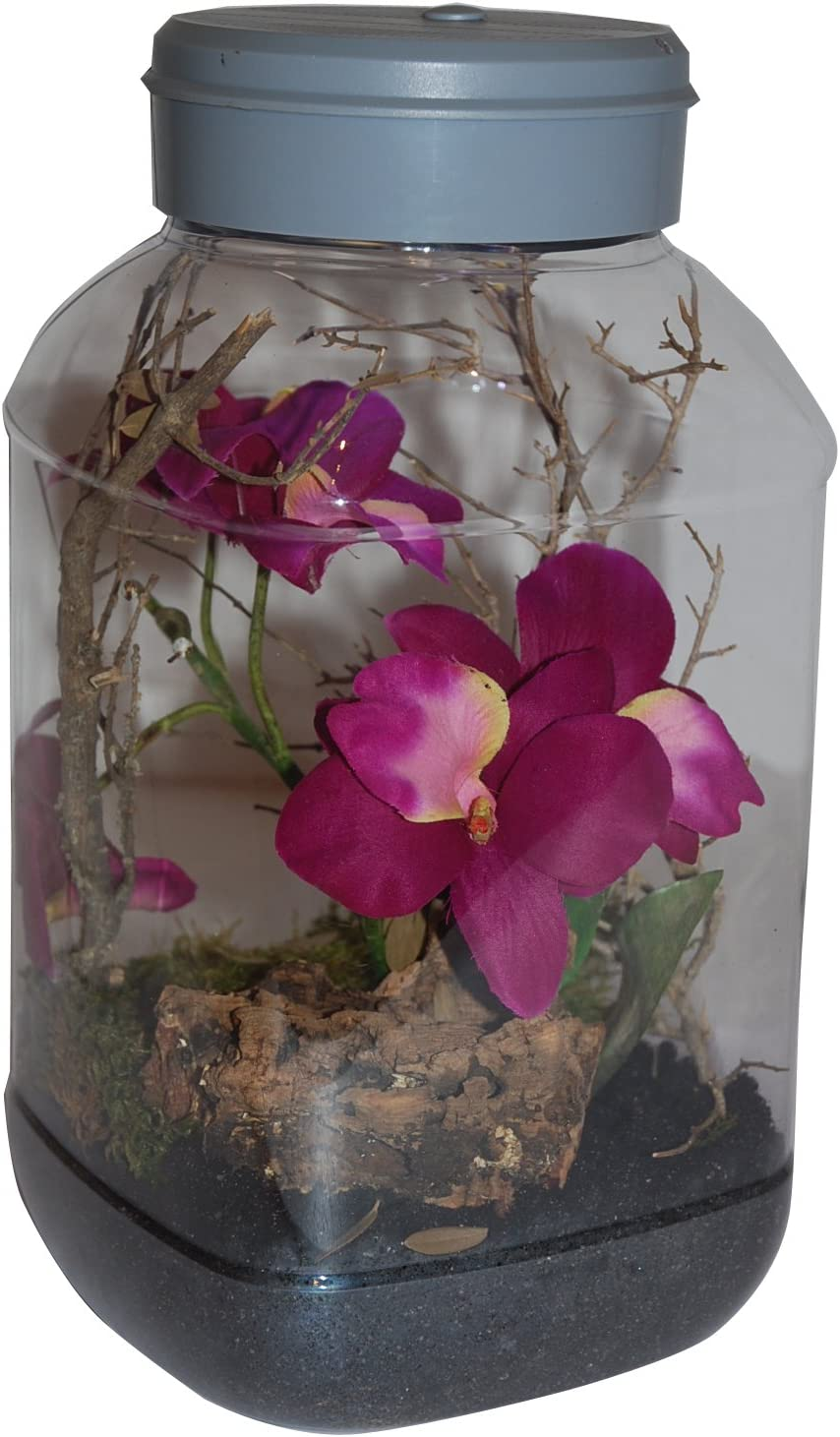 5/litro Lucky Reptile it-5/Insecttarrium