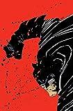 Absolute Dark Knight
