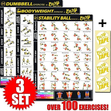 Eazy How To Multi Pack Entrenamiento Ejercicio Banner Póster de Tren Endurance, Tono, Construir Fuerza y músculos Grandes Gimnasio en casa gráfico 28 x 20