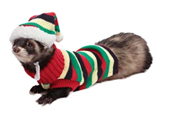 Amazoncom Marshall Hat And Sweater Set Assorted Ferret Clothes