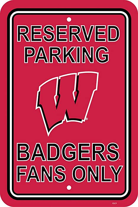 Top 10 Wisconsin Badger Decor