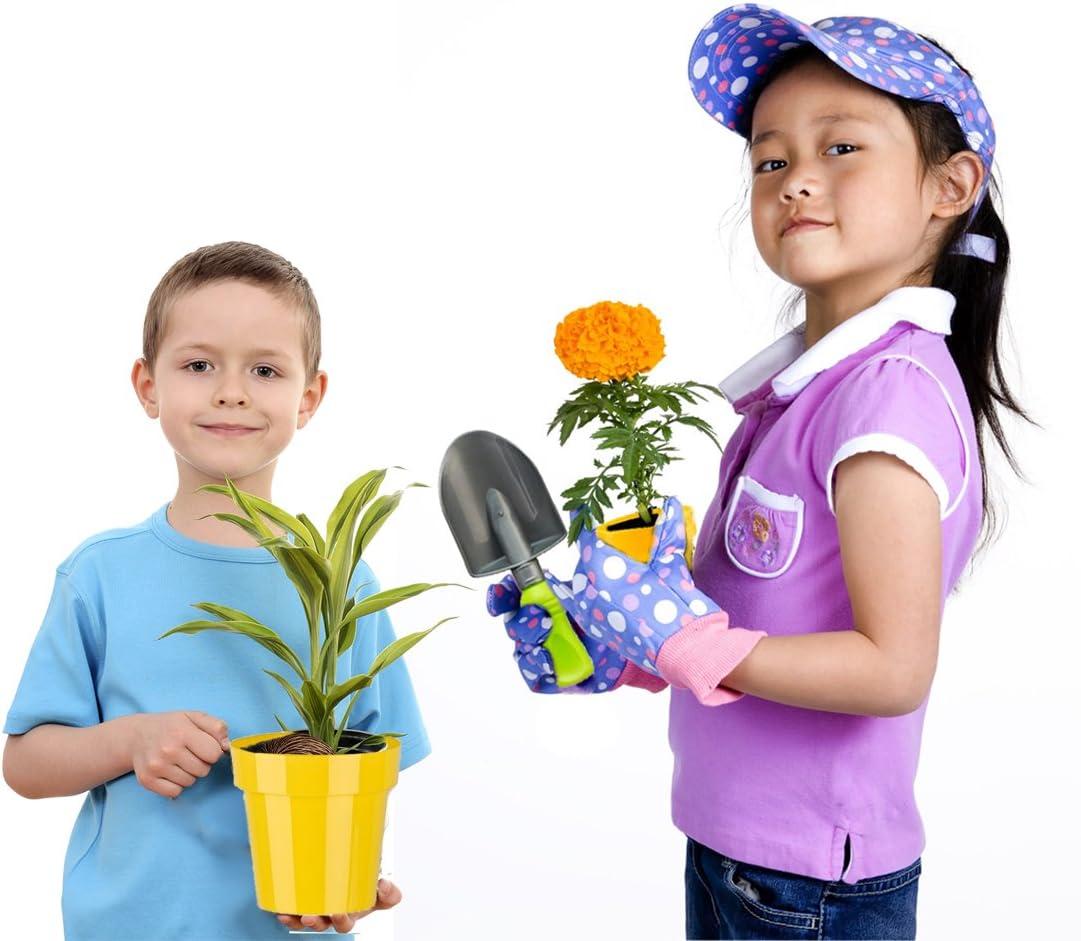 deAO Carretilla y Herramientas de Jard/ín para Ni/ños y Ni/ñas Juego de Bot/ánica y Jardiner/ía Infantil Conjunto Incluye 7 Accesorios