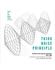 Third Noise Principle. Formative North American Electronica 75-84