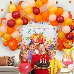 Fall Balloon Garland DIY Kit - Blush and Burgundy Bridal Shower Decor - Autumn Theme Baby Shower First Birthday Balloon Garland Arch Kit Set