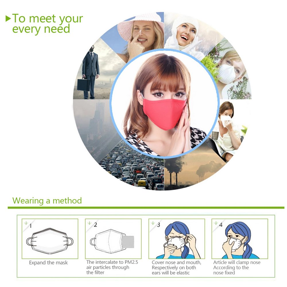 5 Pieces Professional Pm2.5 Masks/respirator (Red)